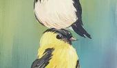 Balance-Birds