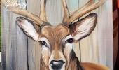 Buck-Deer-2