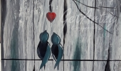 Love-Birds-Backyard
