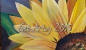 Sunflower 2015