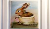 Bunny-Sweet