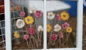 Flowers on Window 3